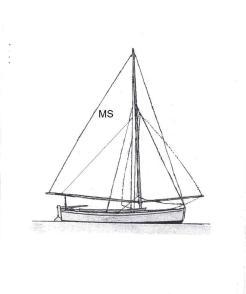 msod-line-drawing