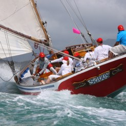 Savvy - Grenada Sailing Week 2017