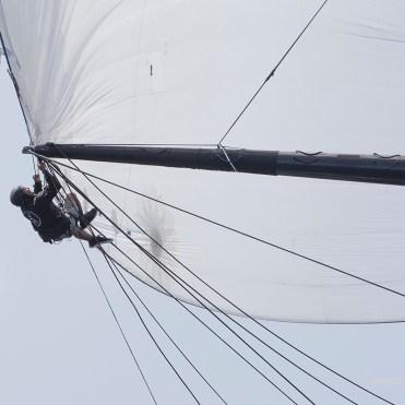 Pole work off Lionheart ©ClaireMatches