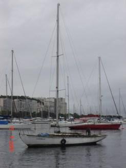 Cangrejo 19.9.2009