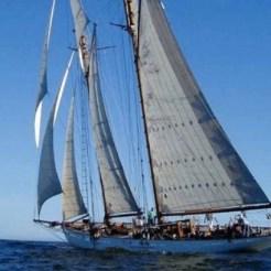 COral sailing 3