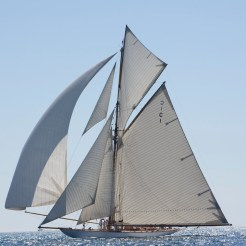 Mariquita under full sail downwind