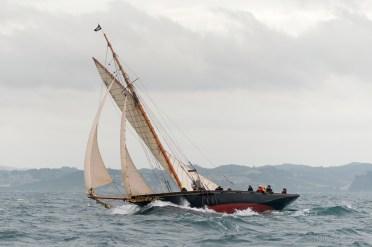 Waitangi Coming Back From The Mahurangi Classic Yacht Regatta, Auckland, NZ.