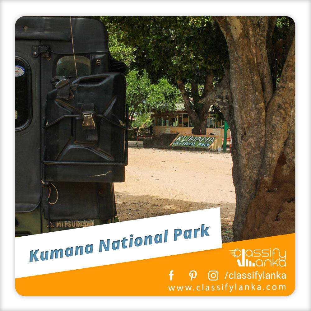Sri Lanka Lunugamvehera National Park Safari guide