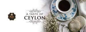 Branded tea company in Sri Lanka