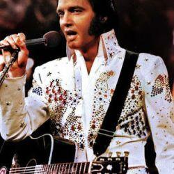 Aluguel Locação Personagem Vivo Elvis Presley