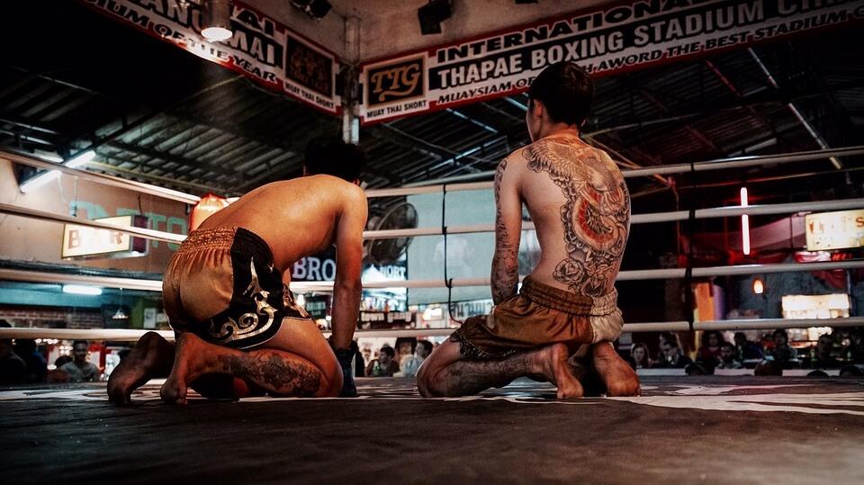Combat de lutte