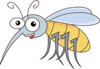 results mosquito - clip