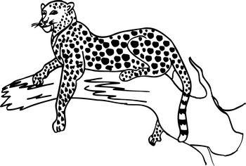 Leopard Clipart : leopard_BW : Classroom Clipart