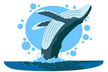 Free Whale Clipart Clip Art Pictures Graphics Illustrations