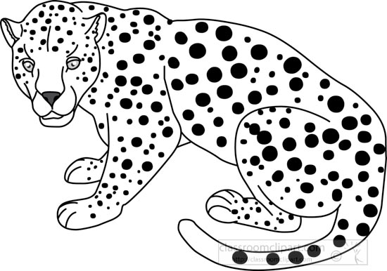 Animals : leopard_312_03A_outline : Classroom Clipart