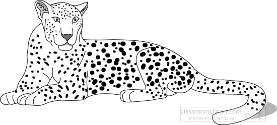 Animals : leopard_312_05A_outline : Classroom Clipart