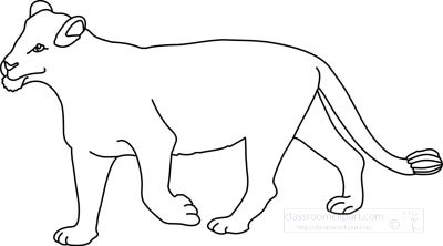 Animals : lioness_clipart_212_outline : Classroom Clipart