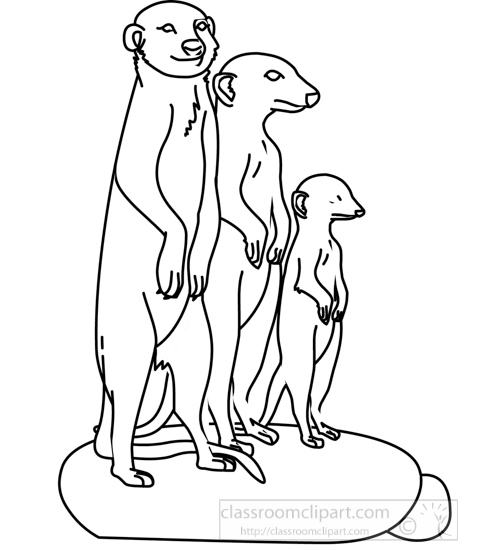 Animals : meerkat_group_312_05A_outline : Classroom Clipart