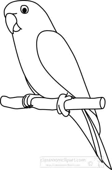 Animals : parrot_2_outline_22212 : Classroom Clipart