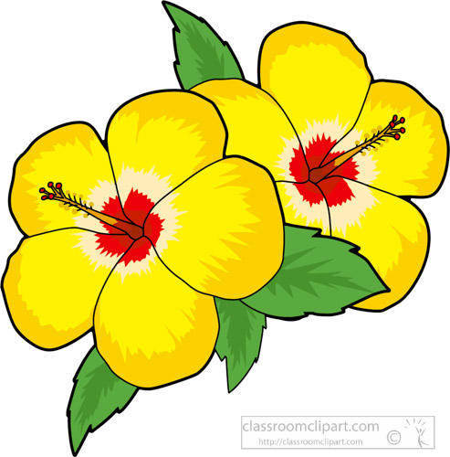 flowers clipart- two-yellow-hibiscus-flower-clipart