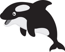 Search Results for killer whale Clip Art Pictures Graphics Illustrations