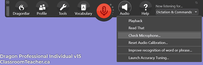 Screenshot of Dragon Professional Individual v15 - audio menu