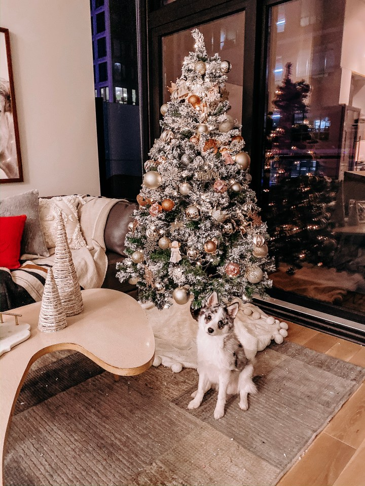 100+ Holiday Home Decorations   Style blogger Emerson Hannon of Classycleanchic shares 100+ Holiday Home Decorations