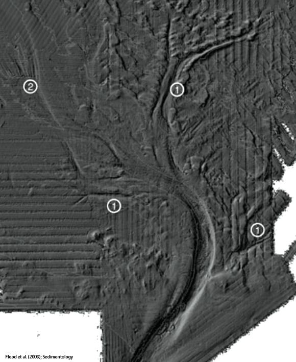 Channel network, southwestern Black Sea (credit: Flood et al. paper in journal Sedimentology; © 2009 International Association of Sedimentologists)