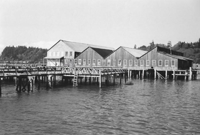Alderbrook-History Scandinavian Cannery