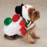 Amazon Enigmas: Christmas Costumes for People and Pets (Humor)
