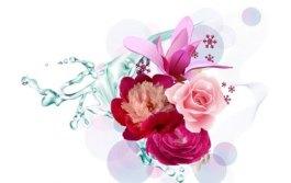 vectores+florales+3