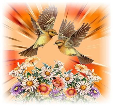 deux-oiseaux-en-vol-avec-fleurs