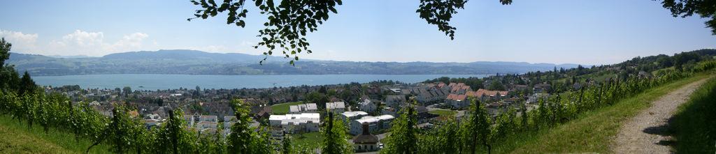 Panorama über Stäfa