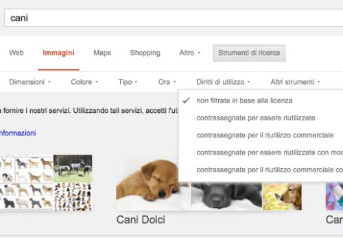 immagini su Google