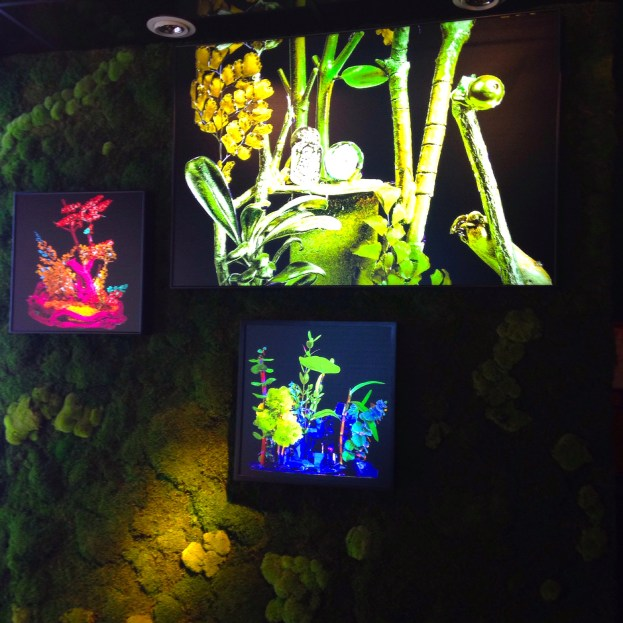 le jardin d'ètè, Claudia Bonollo para MONAMOUR NATURAL DESIGN