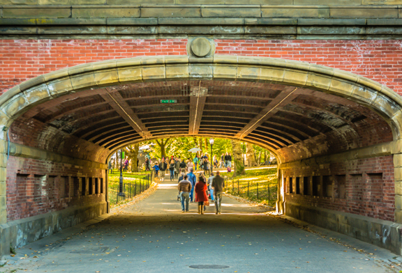 Photo of the Day – Central Park in the Fall