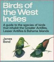 007-birds-of-the-west-indies