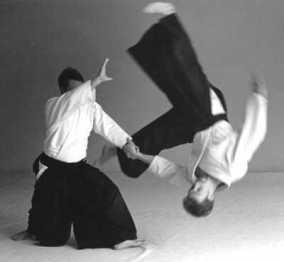 aikido-salute