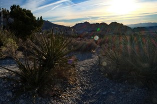 red-rock-canyon_Las-Vegas_04