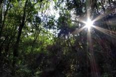 natureza_Minas-Gerais_05