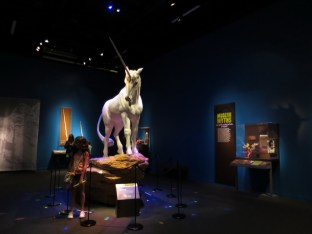 Denver-Museum-Nature-Science_09