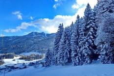 natureza-neve_07