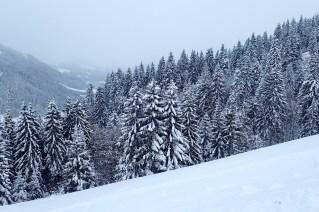 primeira-vez-na-neve_22