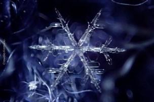 primeira-vez-na-neve_30
