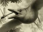 ancient-bird