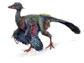 pavel.riha.archaeopteryx_small
