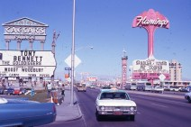 Flamingo and Caeser's Palace