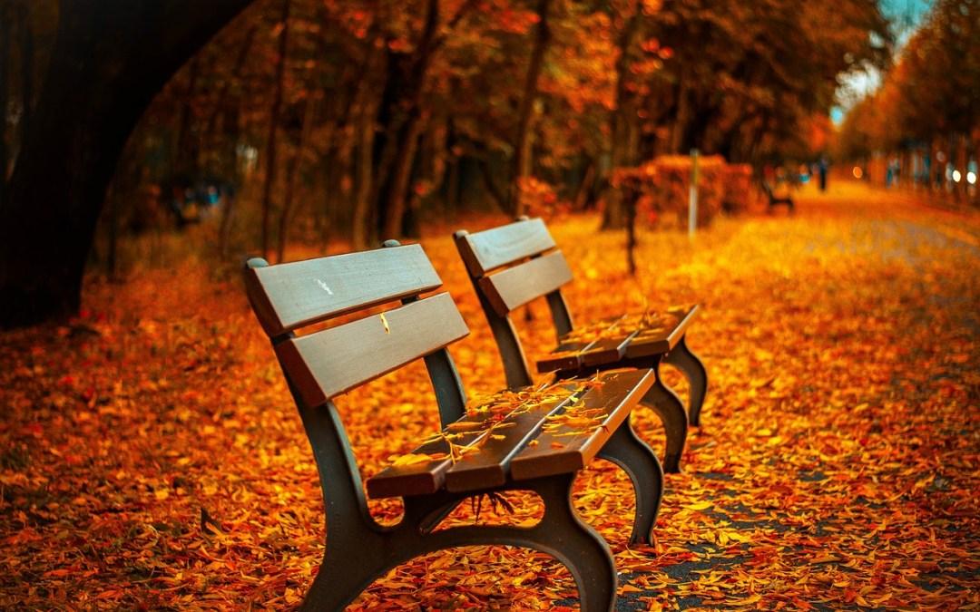 O Mágico e Acolhedor Outono