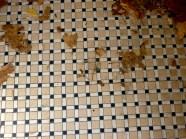 Tile entrance #3 11-15 Bethlehem small