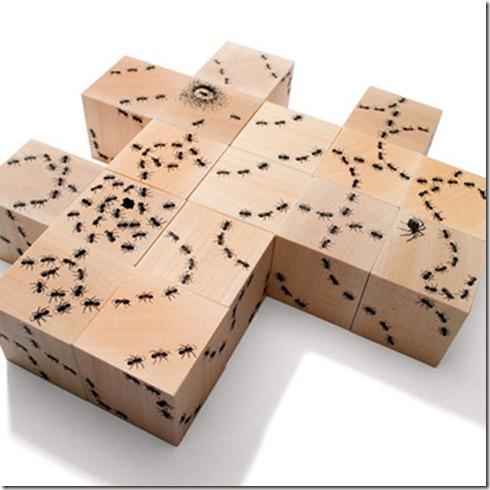 antblocks1.400X400