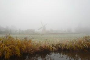Foggy Mill Holland