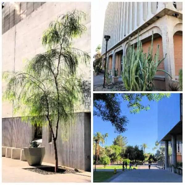 buildings at ASU