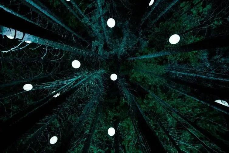 vallea lumina whistler winter