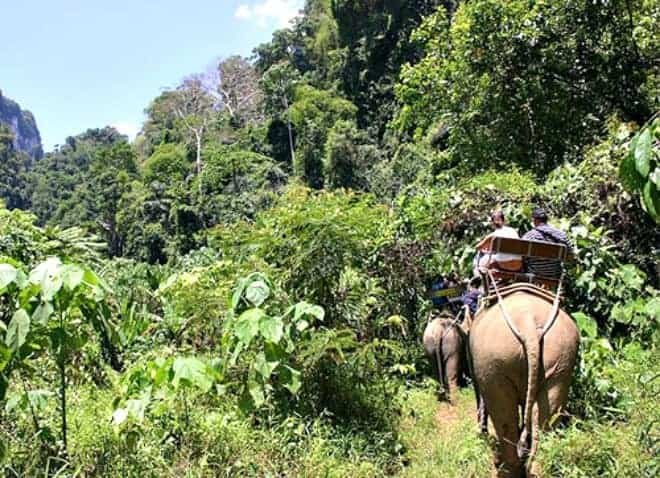 Travel off the beaten path in Thailand. Consider a farmstay holiday with your family and enjoy an unforgettable travel adventure. (via thetravellingmom.ca)
